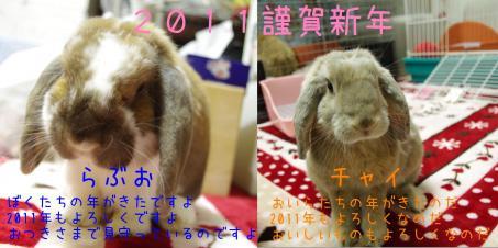 IMGP0854繧峨・縺。繧・>蟷エ雉
