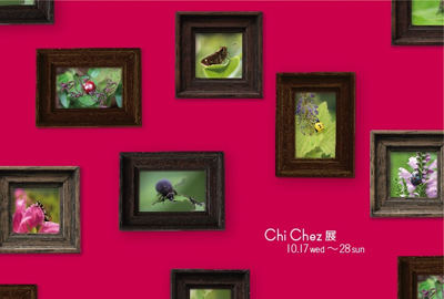 Chi-Chez展