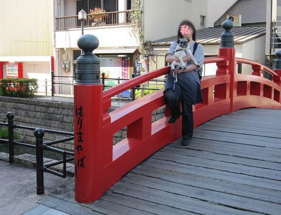 これがはりまや橋。