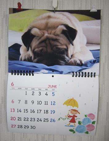 6月のチッチカレンダー