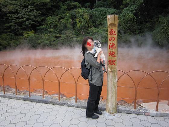 血の池地獄は車で3キロくらい離れていました。