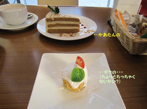 僕のケーキ、小さくない?
