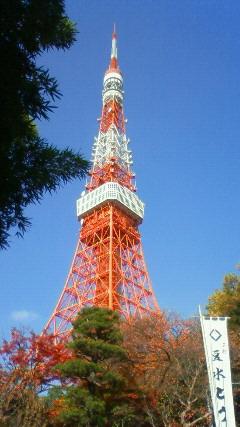 やっぱ東京のシンボルです