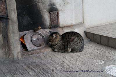2010-03-16_EOS 7D_0068「火の用心、お風呂沸いたら入ろうね」、