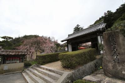 2010.4.10.「能救山岩屋寺、花祭り」、1