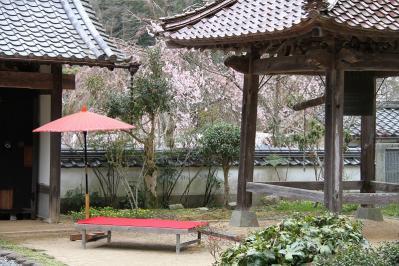 2010.4.10.「能救山岩屋寺、花祭り」、16
