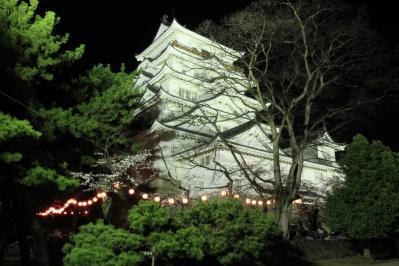 2010.4.2.「福山城の夜桜・花見」、2