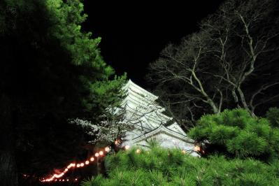 2010.4.2.「福山城の夜桜・花見」、4