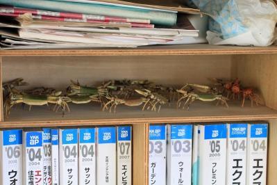 2010-05-14_EOS 7D_1035、「竹製の蟹」、豊田さんち、1