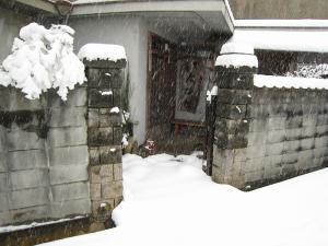 2010.3.9.、「大雪」、5、