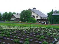13:18 花人の畑と、建物は花人の舎、ドライフラワーの舎