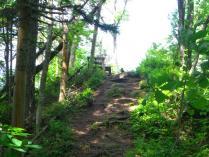 10:59 下山途中の見晴らし台は、カラスが陣取ってます。