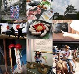 blog-1_20110830174642.jpg