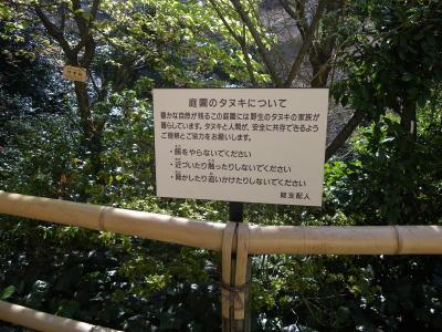 椿山荘のタヌキの注意看板