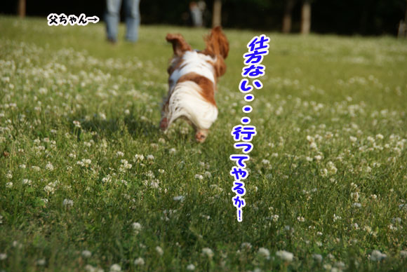 20100524_017とうちゃん