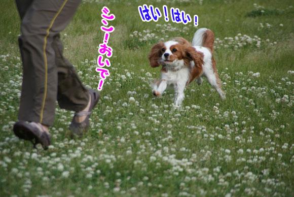 20100524_011母ちゃん