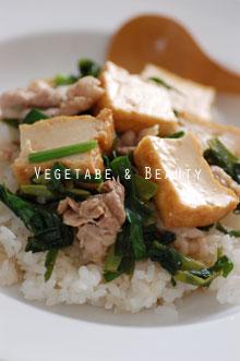 博多万能ねぎと豚肉のシンプル中華丼