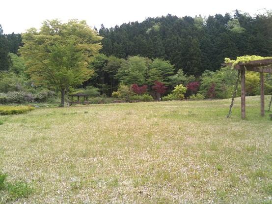 オーキャン宝島 行き25