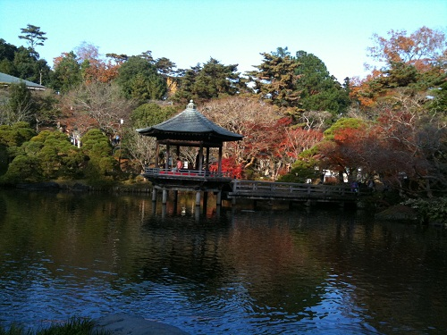 1128成田山公園3