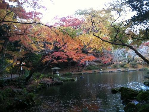 1128成田山公園1