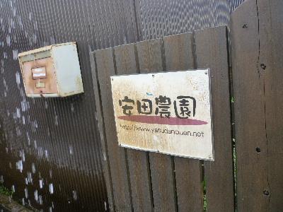 安田農園2