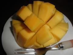 20100825マンゴー