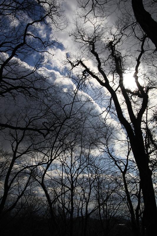 冬の雲まで届け