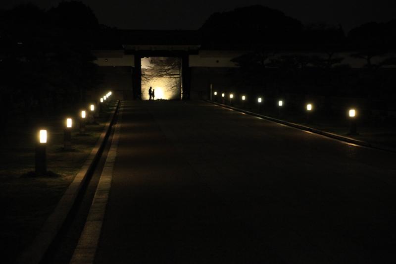 満月の夜の光へ