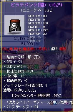 MapleStory_2010_1010_145447_062.jpg