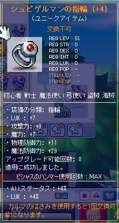 MapleStory_2010_1109_033829_671.jpg