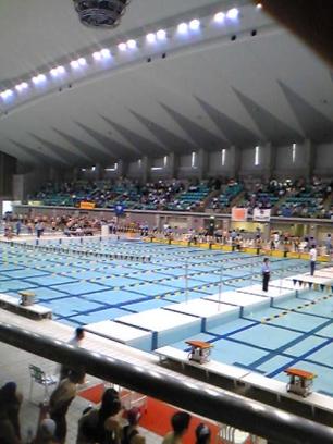 pool_20100510181722.jpg