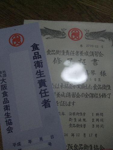 2012_12170004.jpg