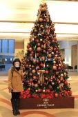 ANAクラウンプラザホテル神戸ツリー