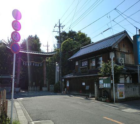 saitama washimiya jinjya 01 20110524_R