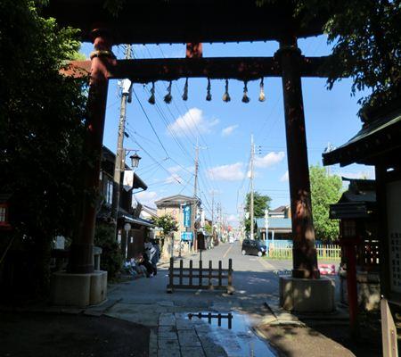 saitama washimiya jinjya 02 20110524_R