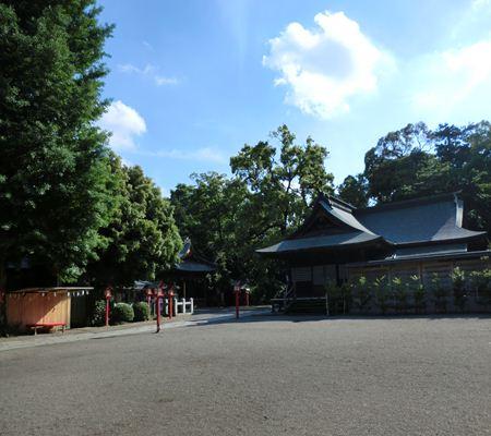 saitama washimiya jinjya 06 20110524_R