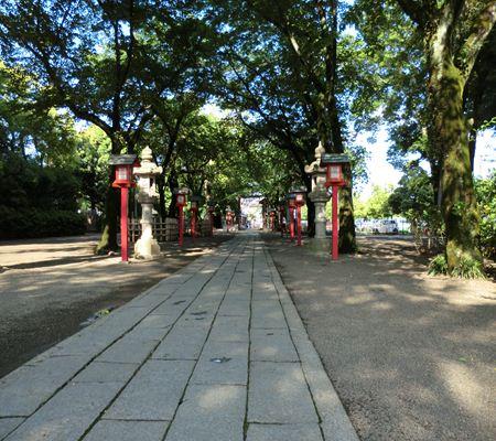saitama washimiya jinjya 05 20110524_R
