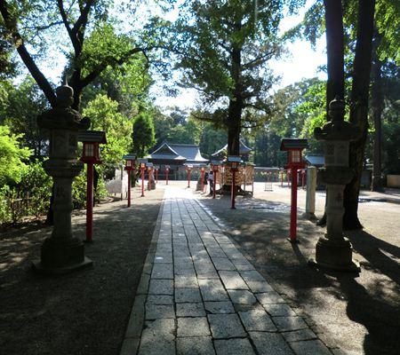 saitama washimiya jinjya 04 20110524_R