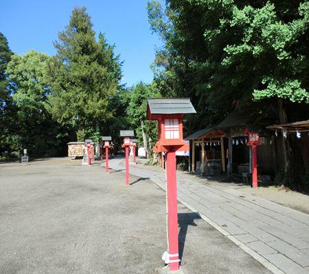 saitama washimiya jinjya 10 20110524_R