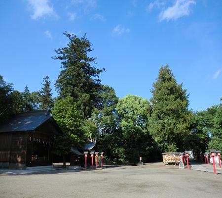 saitama washimiya jinjya 09 20110524_R