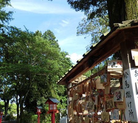 saitama washimiya jinjya 12 20110524_R