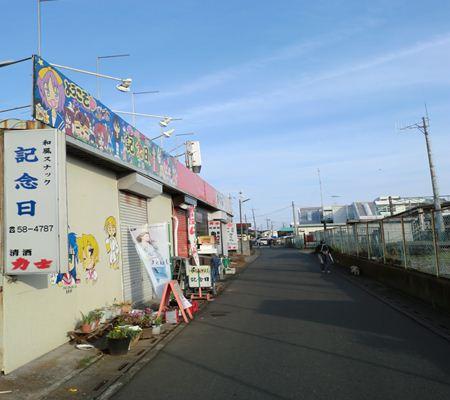 kinenbi 01 washinomiya 20110524_R