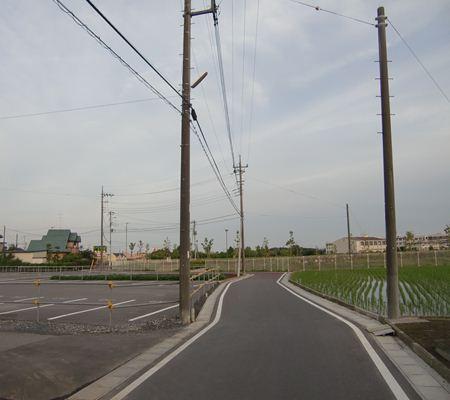 washi kagono 01 20110524_R