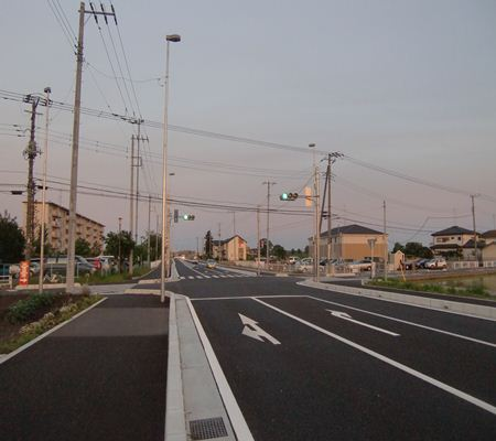 washinomiya near danchi 01 20110524_R