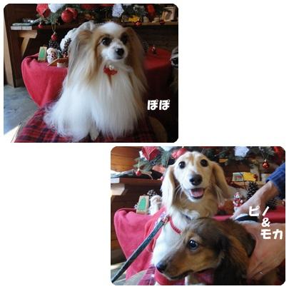 2013-11-140.jpg