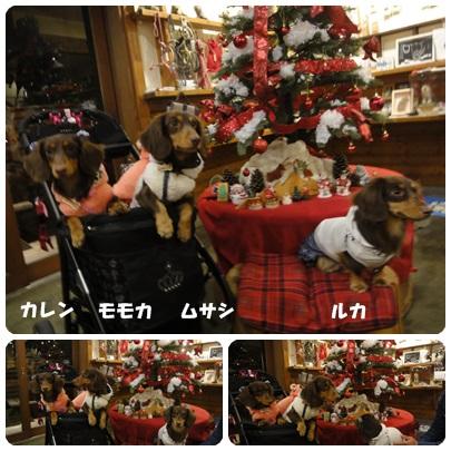 2013-11-146.jpg