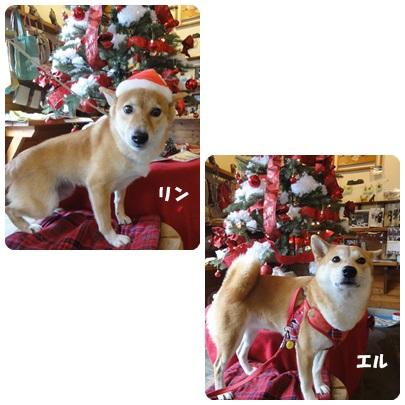 2013-12-54.jpg