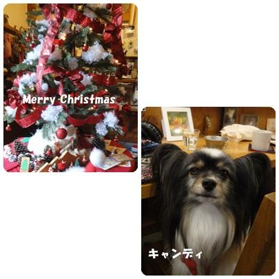 2013-12-61.jpg