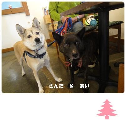 2013-12-71.jpg