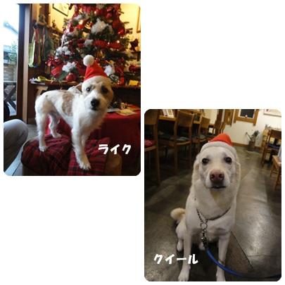2013-12-74.jpg